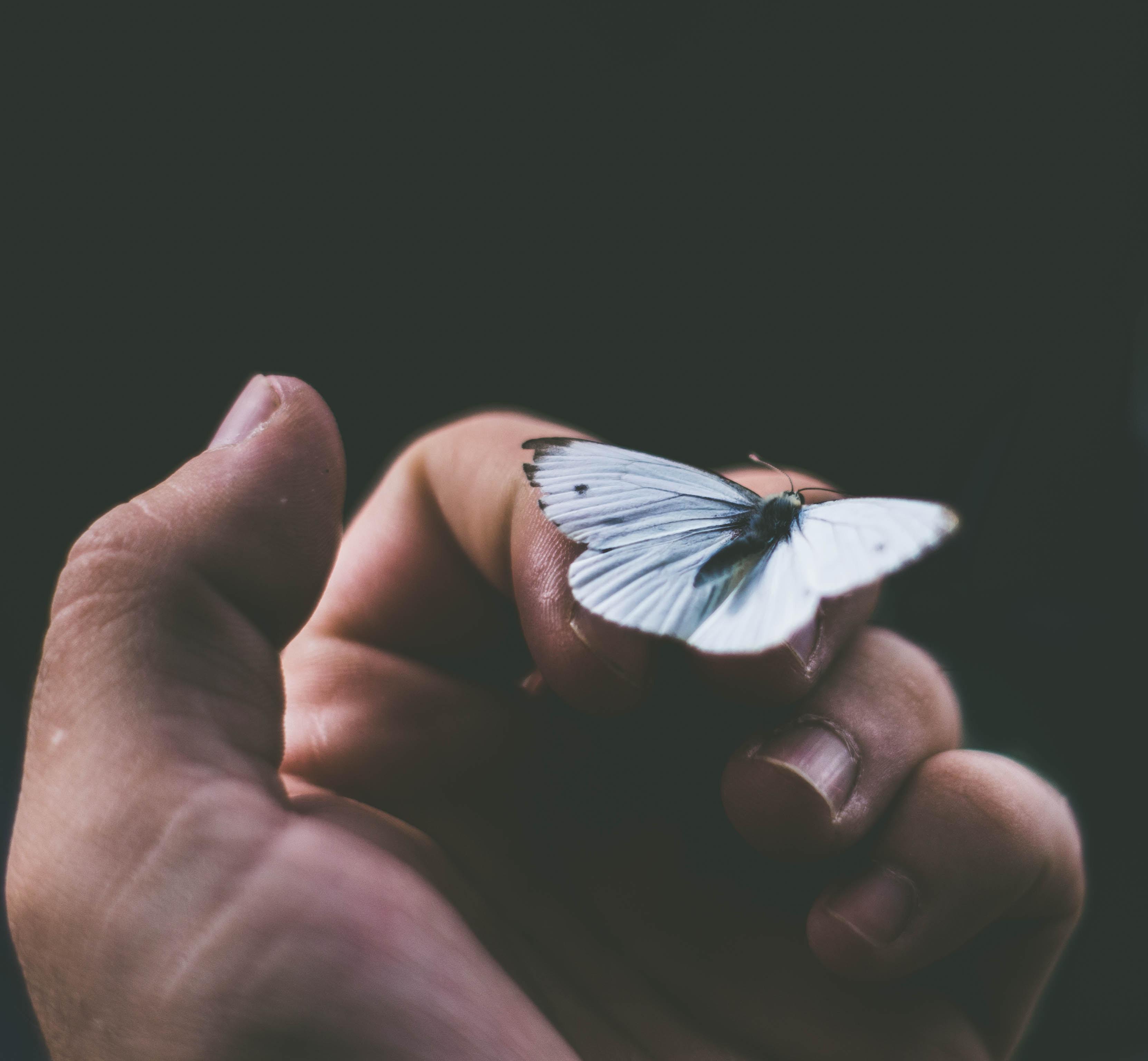 Terapia transpersonal de duelo